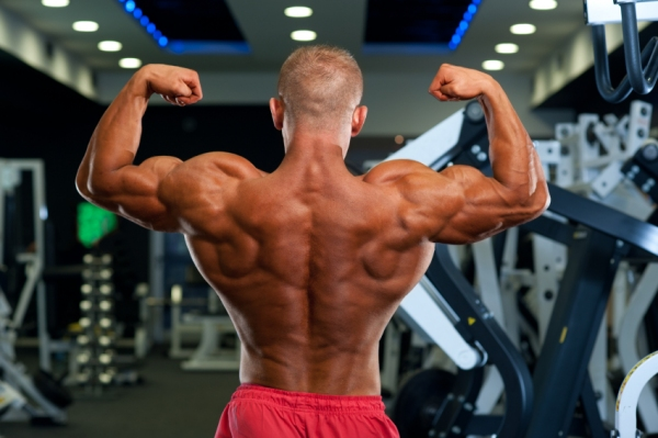 week intense workouts part   workout muscle