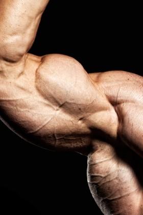 Build Big Arms
