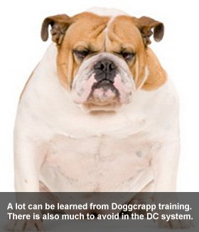 Is Doggcrapp Training Effective?