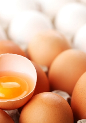 Protein foods: eggs
