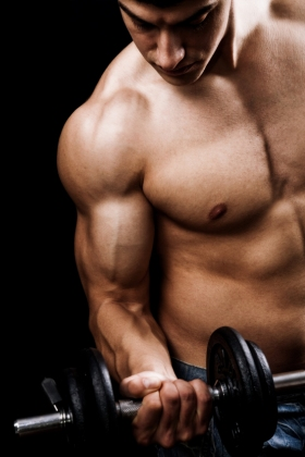 Gain muscle without getting fat.