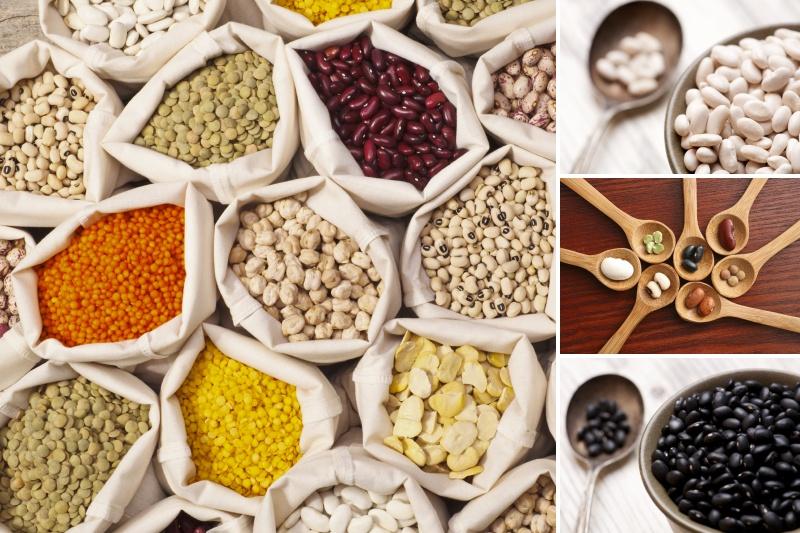 Dangers of Legumes