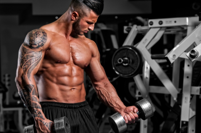 Protein and muscle growth myth