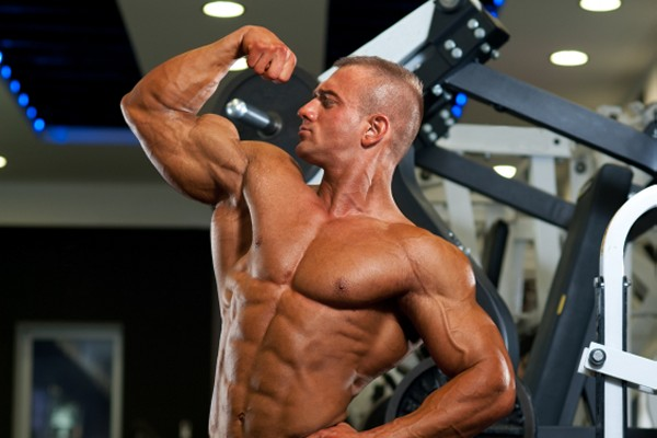 Choose the most effective exercises for each muscle group