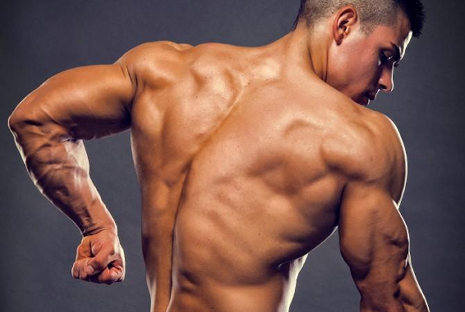 Big Triceps