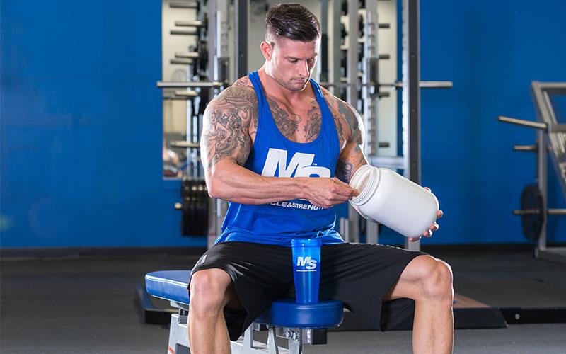 Bodybuilding essentials protein