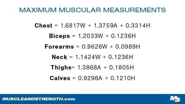 Butt's Maximum Muscular Potential per grouping