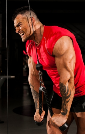 Building Muscle Why Less Is More Muscle Strength