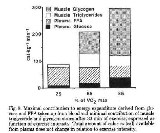 Study showing the importance of carbs for high intensity training