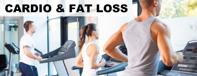 Cardio & Fat Loss