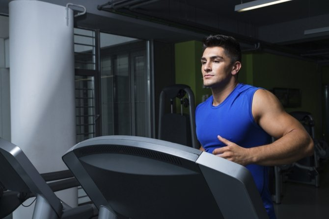 Cardio and Muscle Building