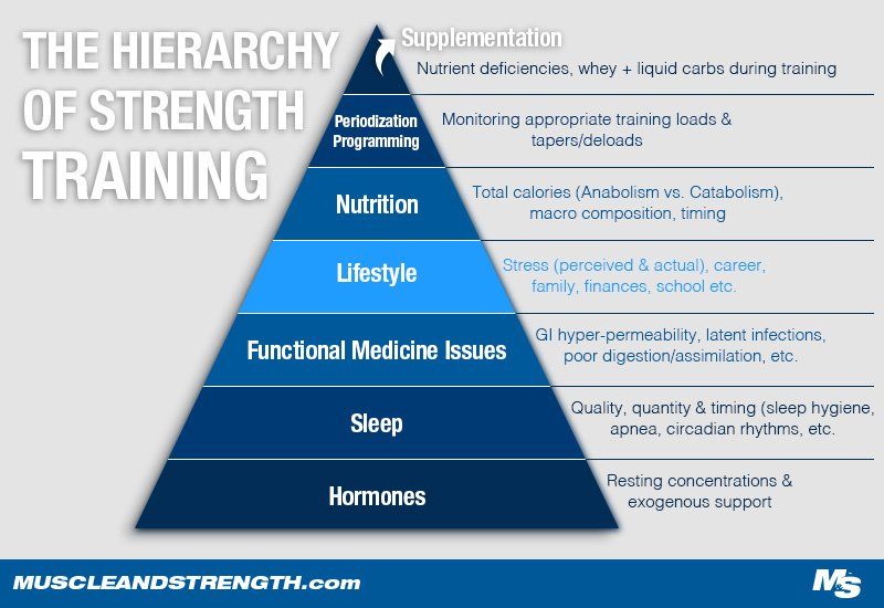 The hierarchy of strength training diagram