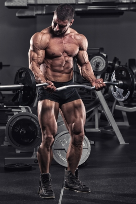 Endomorph Muscle Building
