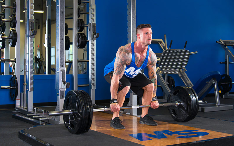 From Cutting to Bulking: Keep your form in check