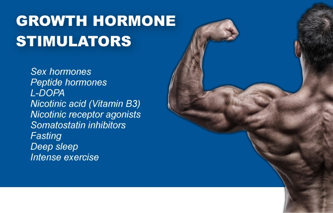 Growth hormone stimulators
