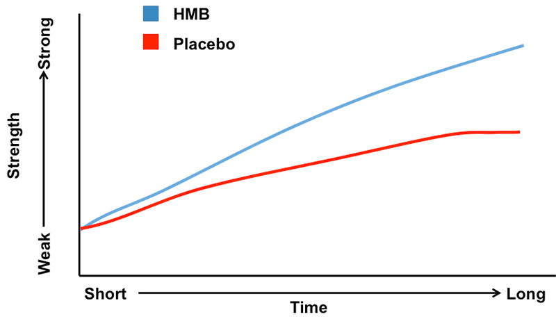 HMB: Hype or Help? Effects on trained individuals