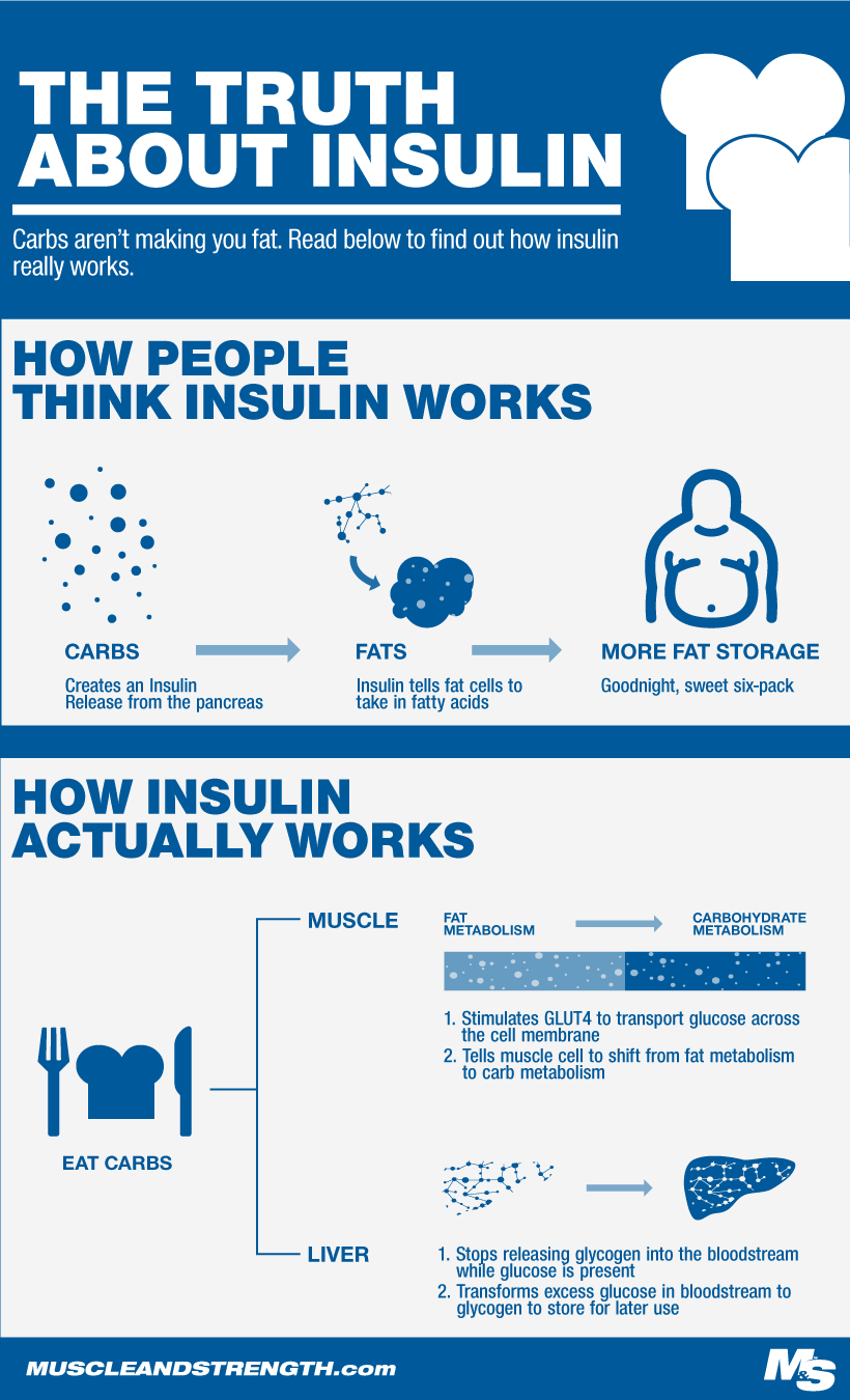 How Insulin Works Infographic