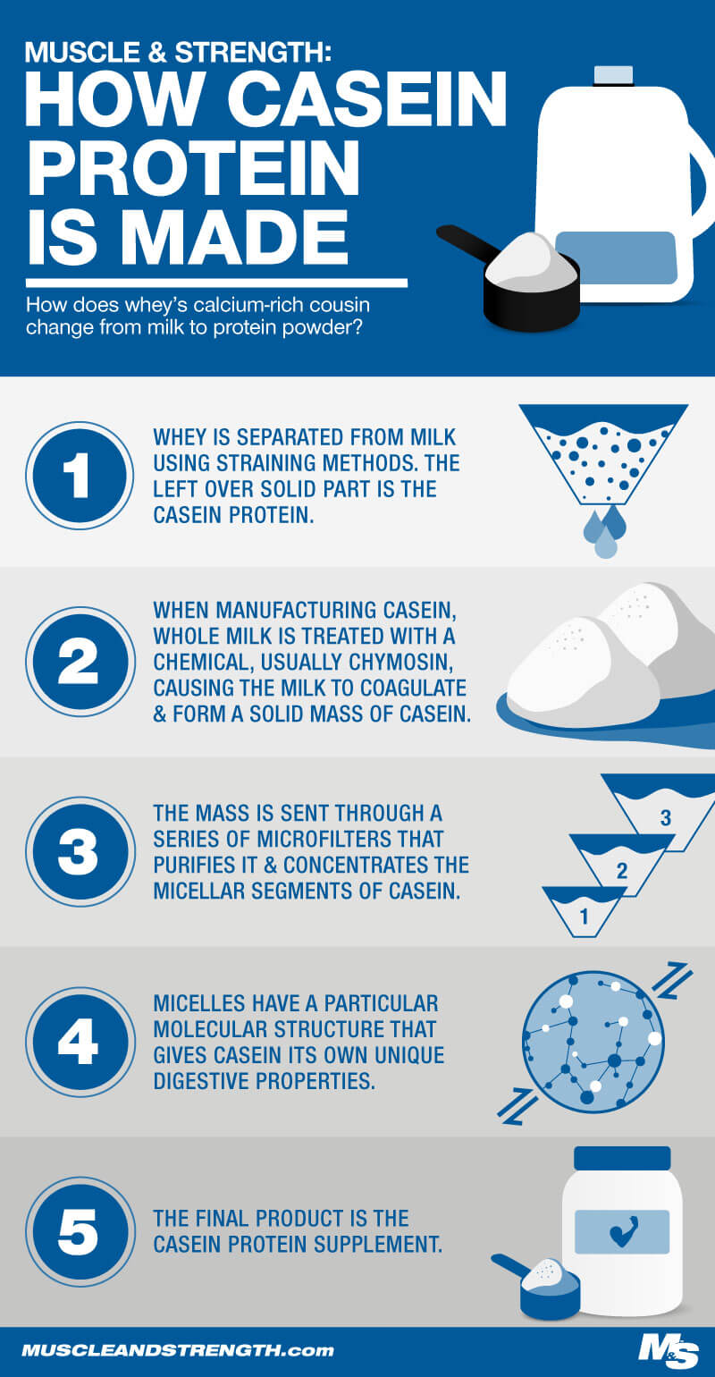How Casein is Made Infographic