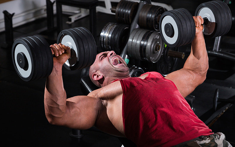 bench press for size and strength