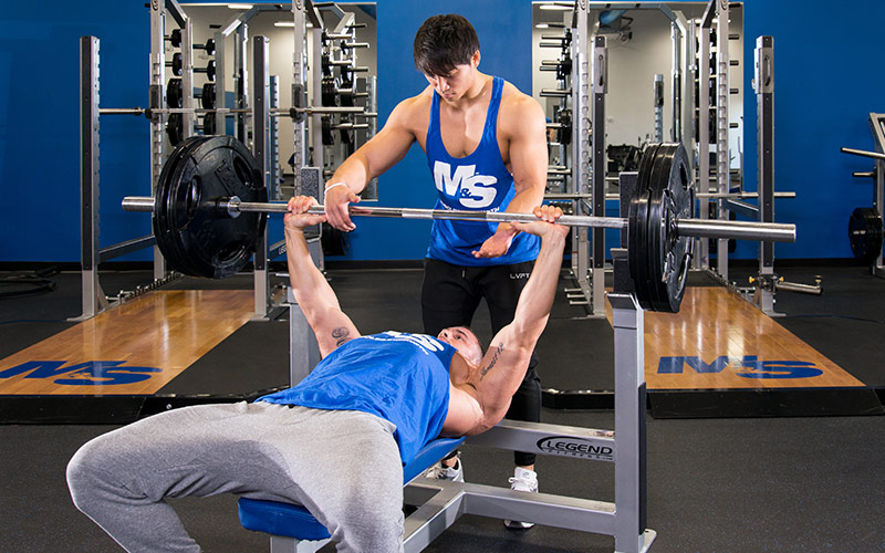 Mass Building Bench Press