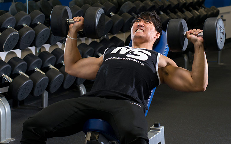 Build a Massive Chest Incline Dumbbell Press