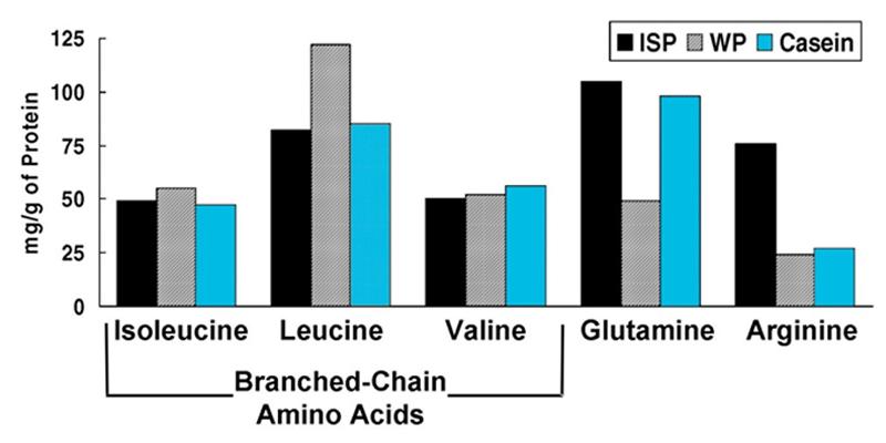 Micellar Whey versus Casein and Whey Protein