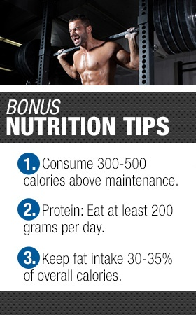 Bonus nutrition tips