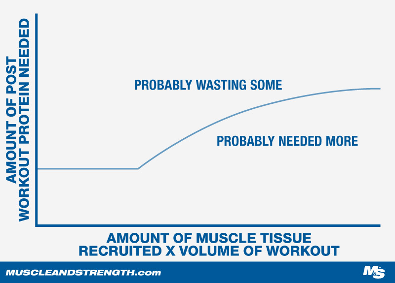 Protein Consumption, What is needed and What is wasted