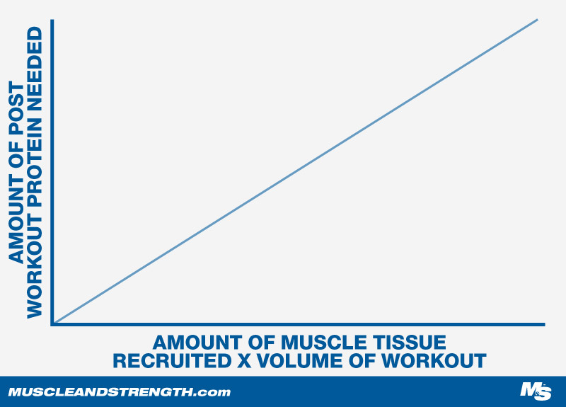 Protein Consumption and Growing New Muscle