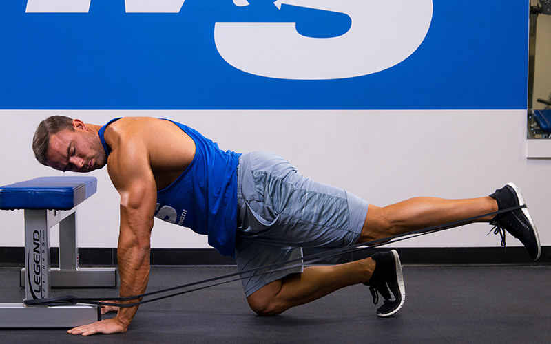 Quadruped Banded Hip Extension Glute Exercise
