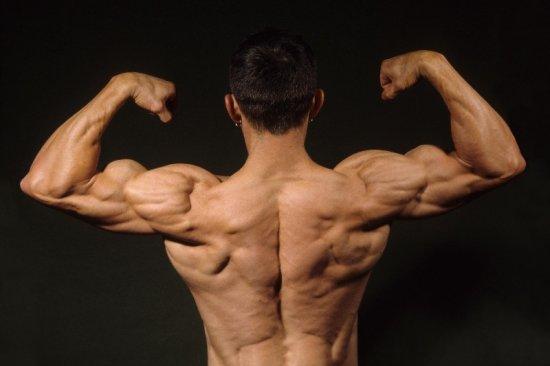 Jordan Chabinsky Muscular Back