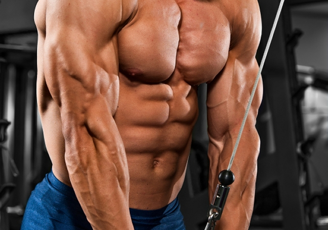 How To Build Giant-Sized Horseshoe Triceps | Muscle & Strength