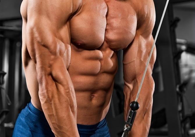 Huge triceps