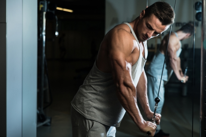 how to build lower tricep muscle