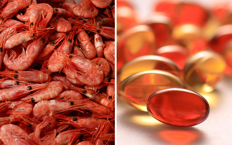 5 Healthy Fat Sources You're Not Eating: Krill Oil