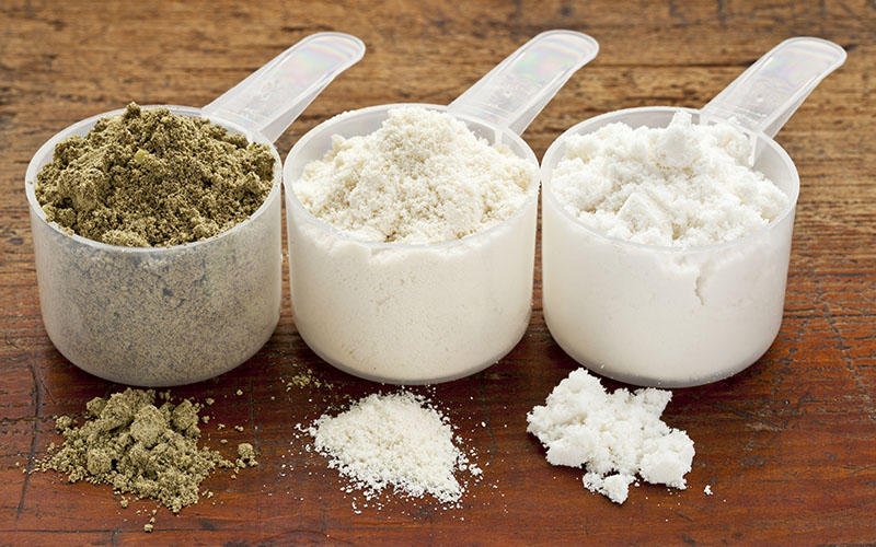 Plant-Based Protein Supplement Powders