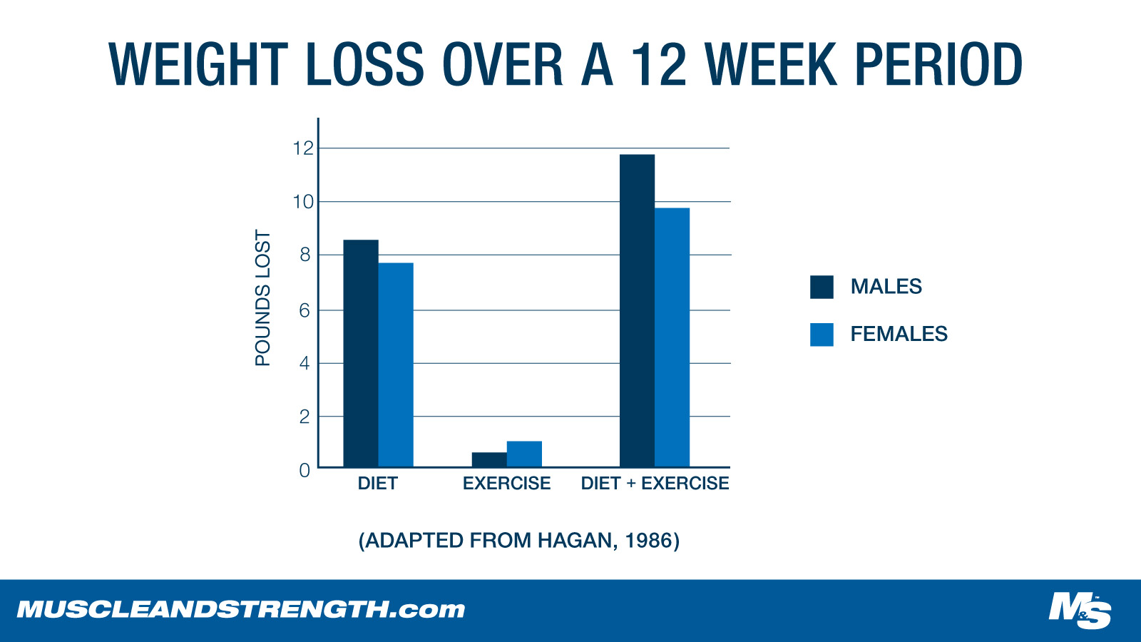 12 Week Weight Loss Study