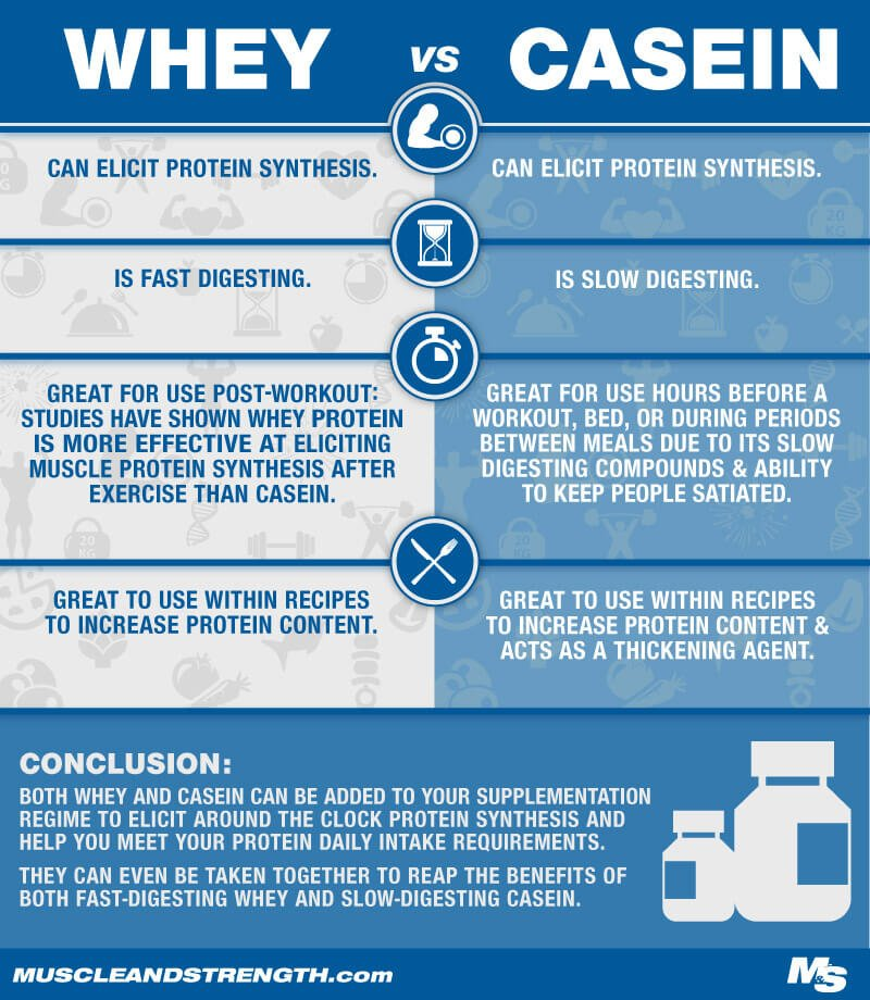 Whey Vs Casein Infographic