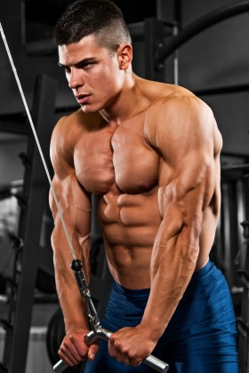 Conquering The Giant: Giant Set Workouts For Hypertrophy & Fat Loss