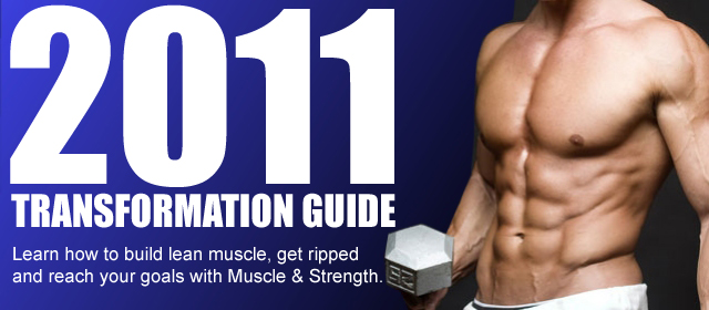 2011 Transformation Guide