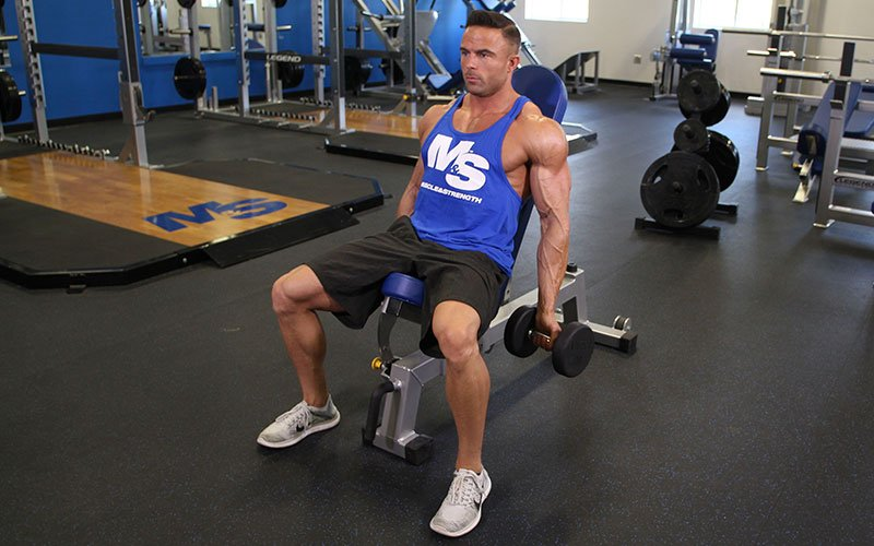 Incline Dumbbell Curl Video Exercise Guide Amp Tips