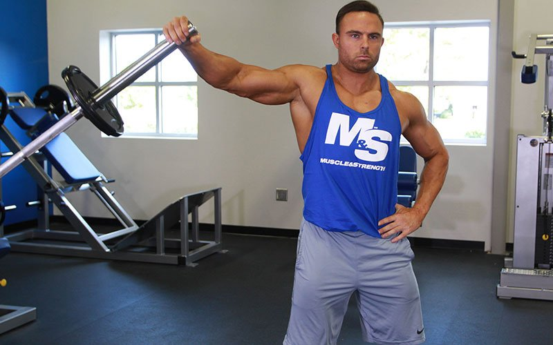 Image result for landmine lateral raise