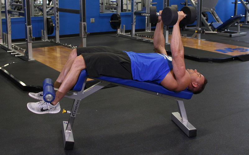 Neutral Grip Decline Dumbbell Bench Press Video Exercise