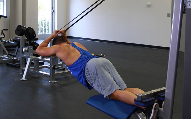 band assisted nordic hamstring curl  video exercise guide