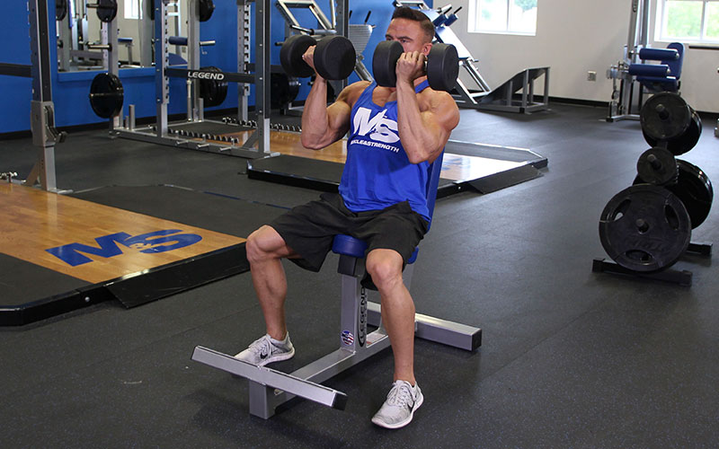 Seated Arnold Press Video Exercise Guide Amp Tips