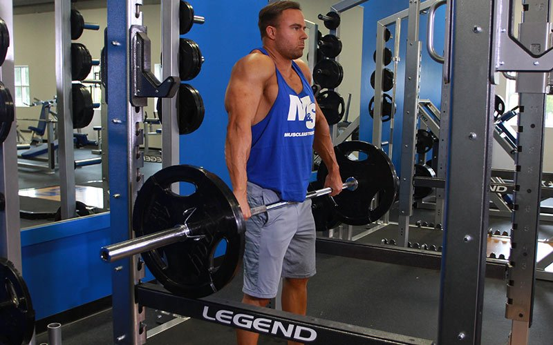 Traps Exercises 100 Free Video Exercise Guides Muscle