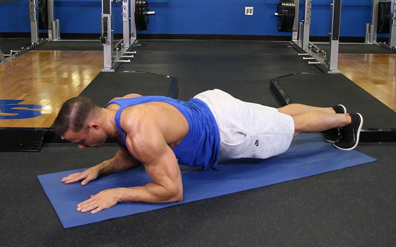 Triceps Exercises 200 Free Video Exercise Guides