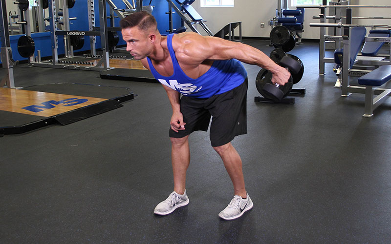 One Arm Bent Over Dumbbell Tricep Kickback Video Exercise