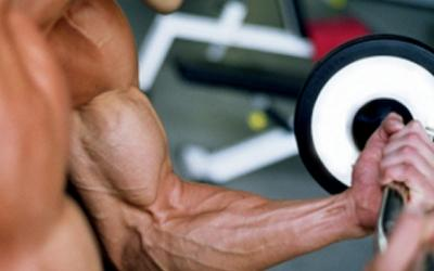 Arm Yourself with These 7 Bicep Blasters