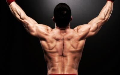 How To Quickly Build An Impressive Back and Lats